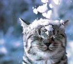 ♣♥angel♥♣ ♣♥kenish♥♣, 7 января , Ахтубинск, id89468783